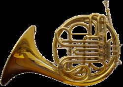 French horn httpsuploadwikimediaorgwikipediacommonsthu