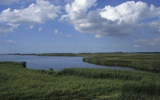 Friesland Beautiful Landscapes of Friesland