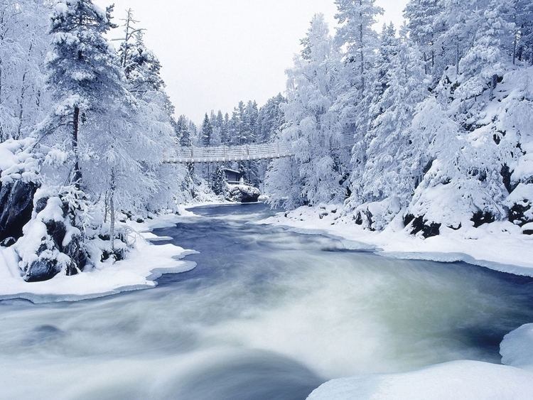 Frozen River Frozen river and trees wallpapers Frozen river and trees stock photos