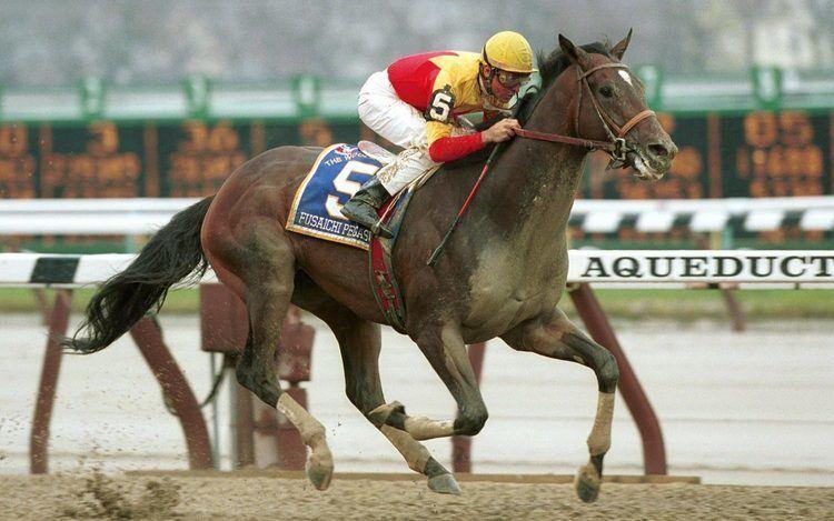 Fusaichi Pegasus Fusaichi Pegasus in action Ten of the most expensive animals in