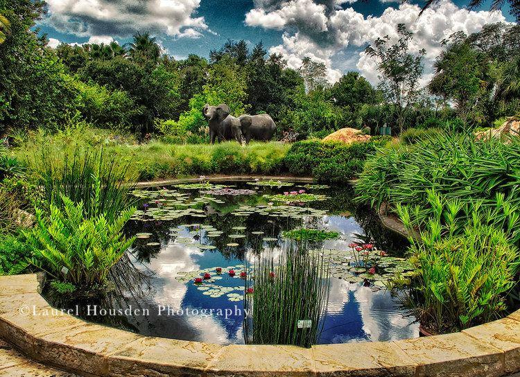 Gainesville, Florida Beautiful Landscapes of Gainesville, Florida