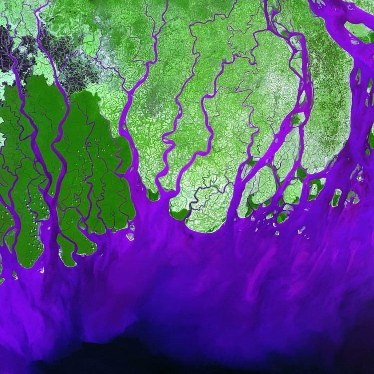 Ganges Delta Ganges River Delta Image of the Day