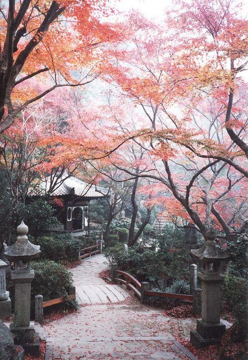 Gapan Beautiful Landscapes of Gapan