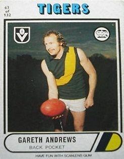 Gareth Andrews saflcomaustaticfileAFL20TenantInvisible20A