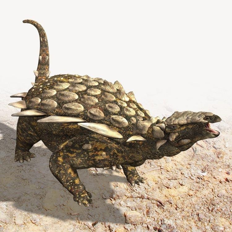 Gargoyleosaurus httpsbw1651cf0d2f737d7adeab84d339dbabd3bcss3