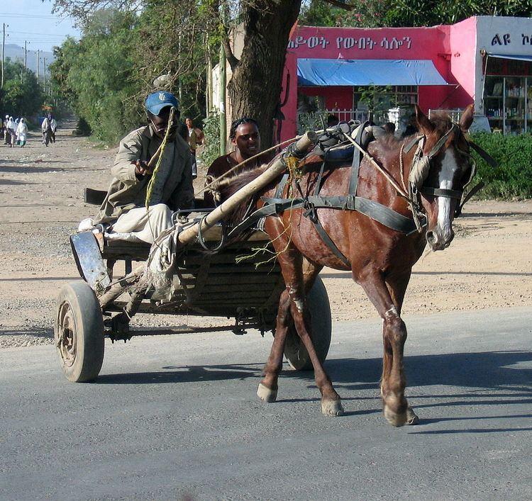 Gari (vehicle)