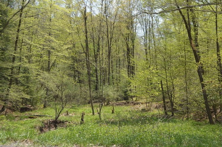 Gaskill Township, Jefferson County, Pennsylvania