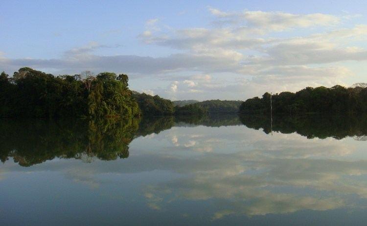 Gatun Lake panamafishingandcatchingcomgatunGatunLake0620jpg