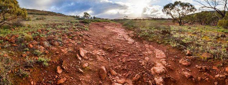 Gawler Ranges National Park Gawler Ranges National Park National Parks South Australia