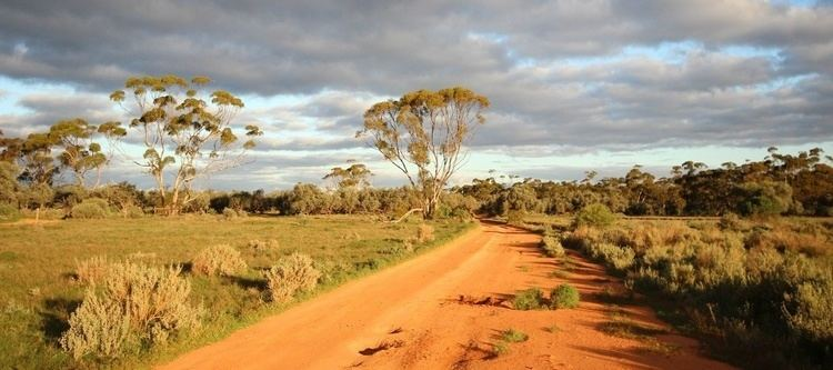 Gawler Ranges National Park Top five things to see in Gawler Ranges National Park Good Living