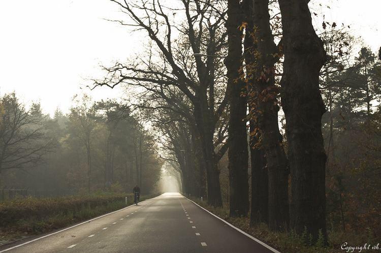 Gelderland Beautiful Landscapes of Gelderland