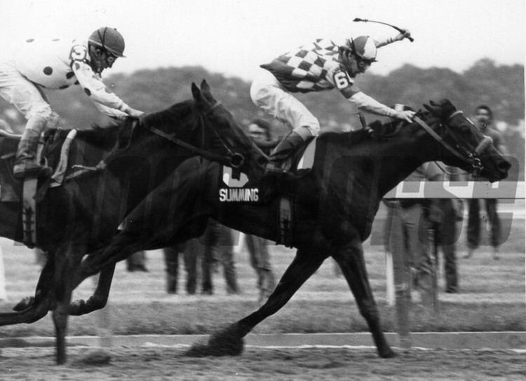 George Martens (jockey) Summing 1981 Belmont Stakes winner Jockey George Martens Winning