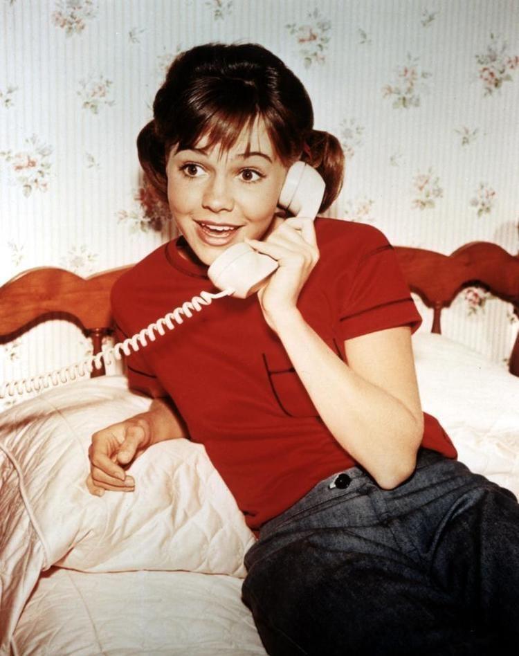 Gidget Gidget TV Series 1965