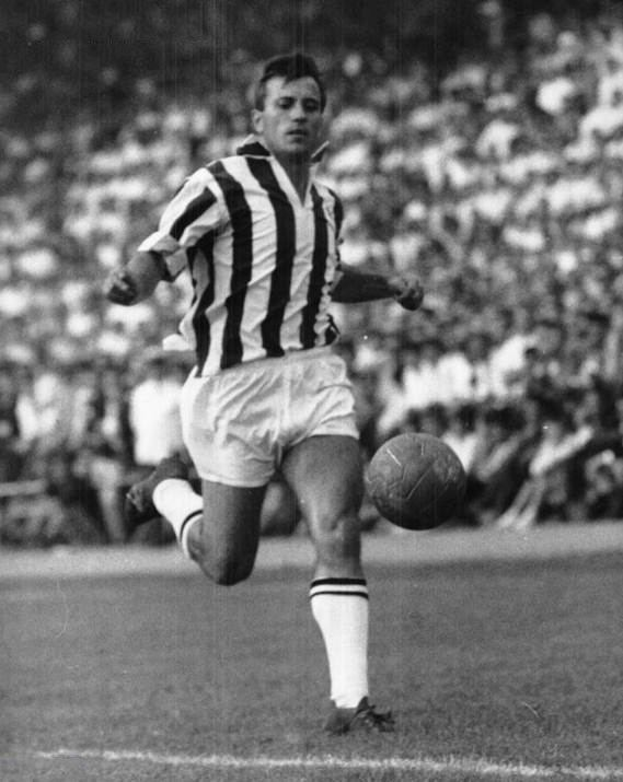 Gino Stacchini Gino Stacchini Juventus Pinterest