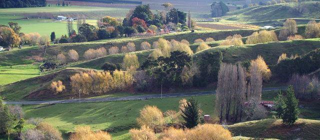 Gisborne, New Zealand Beautiful Landscapes of Gisborne, New Zealand