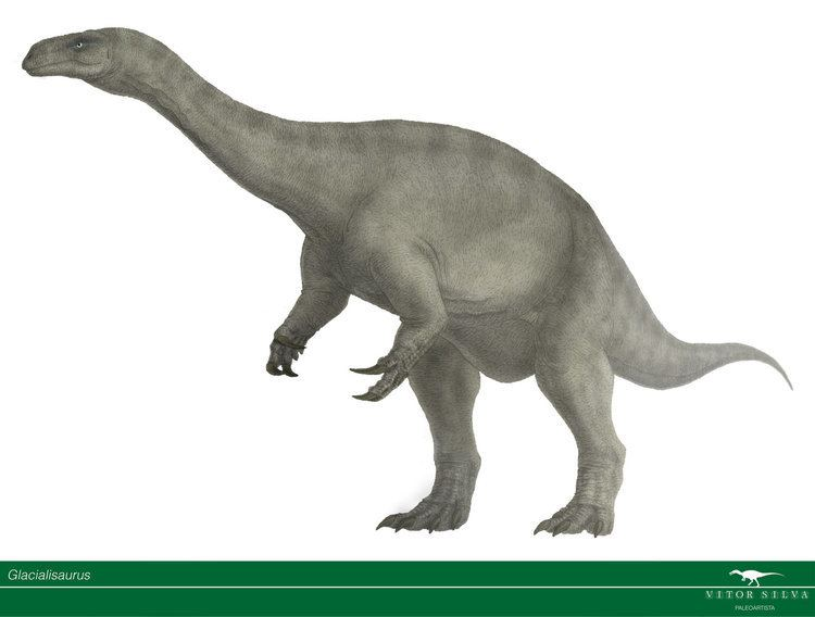 Glacialisaurus glacialisaurus DeviantArt