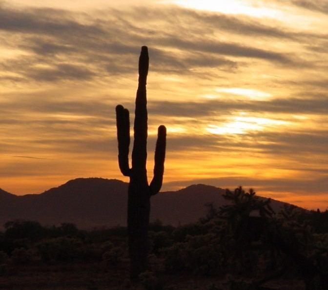 Glendale, Arizona Beautiful Landscapes of Glendale, Arizona