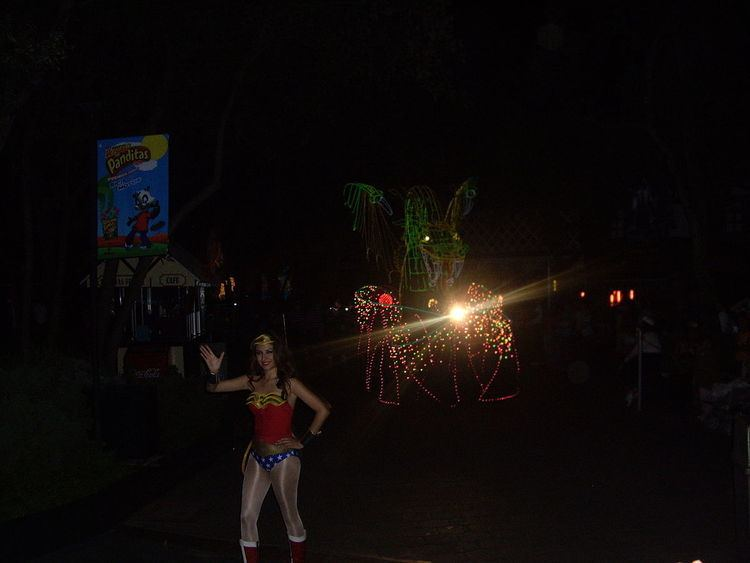 Glow in the Park Parade