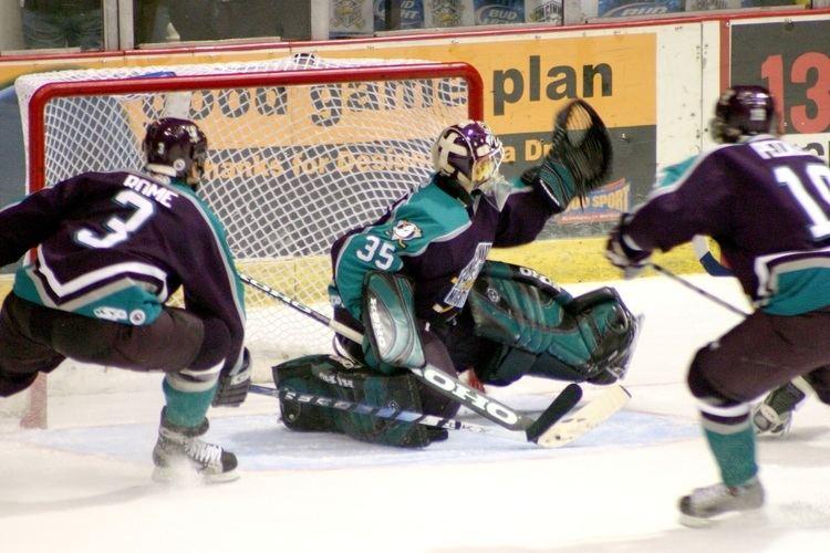 Goal (ice hockey)