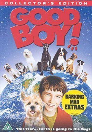 Good Boy! Good Boy DVD 2003 Amazoncouk Liam Aiken Matthew Broderick