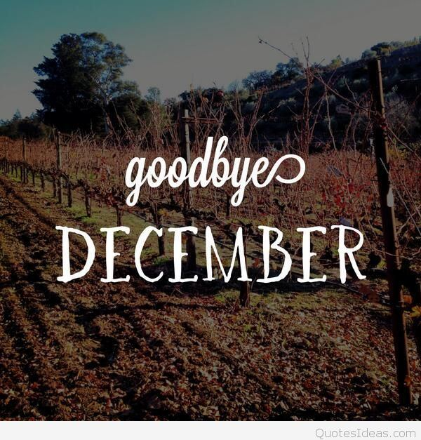 Goodbye December Wallpaper Photo Goodbye December