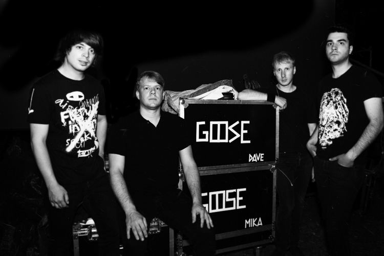 Goose (band) The Goose amp Francis and The Cats live at Giardino di Boboli GREY