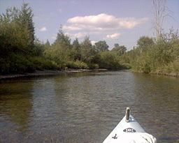 Goose Creek (River Raisin) httpsuploadwikimediaorgwikipediaenthumb8