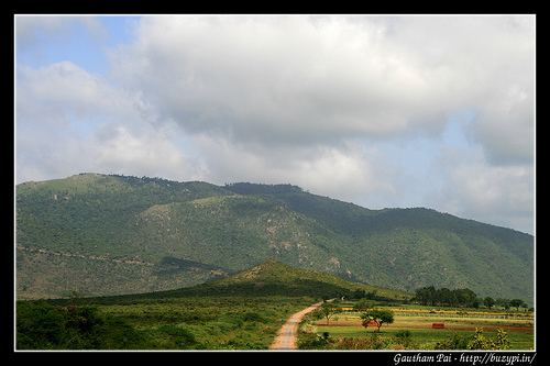 Gopalaswamy Hills Trip to Gopalaswamy betta and BR hills Travel Photography and