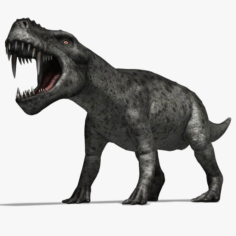 Gorgonops 3d dinosaurs gorgonops model