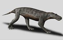 Gorgonops httpsuploadwikimediaorgwikipediacommonsthu