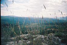 Gorno Pavlikene httpsuploadwikimediaorgwikipediacommonsthu