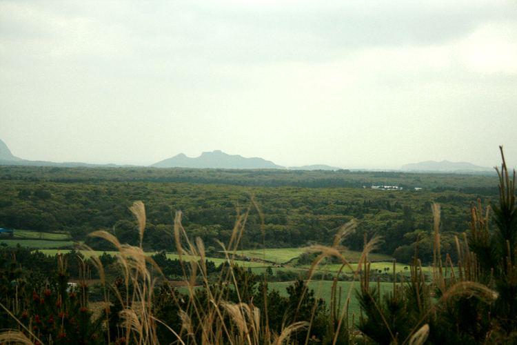 Gotjawal Forest - Alchetron, The Free Social Encyclopedia