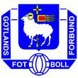 Gotland official football team httpsuploadwikimediaorgwikipediaen22aGot