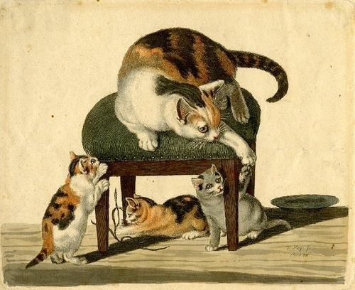 Gottfried Mind CATS IN ART 18TH CENTURY THE GREAT CAT THE GREAT CAT