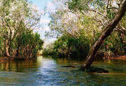 Goyder River httpsuploadwikimediaorgwikipediacommonsthu