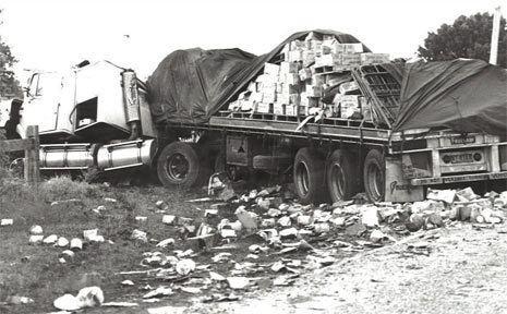 Grafton bus crash Cowper bus victims remembered Grafton Daily Examiner
