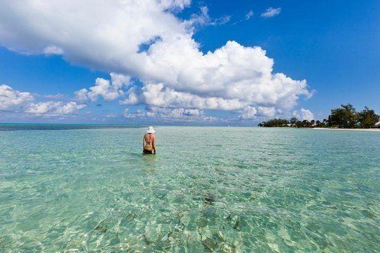 Grand Cayman Grand Cayman 2017 Best of Grand Cayman Tourism TripAdvisor