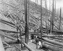 Great Fire of 1910 httpsuploadwikimediaorgwikipediacommonsthu