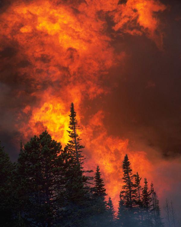 Great Fire of 1910 ffKarireducedjpg
