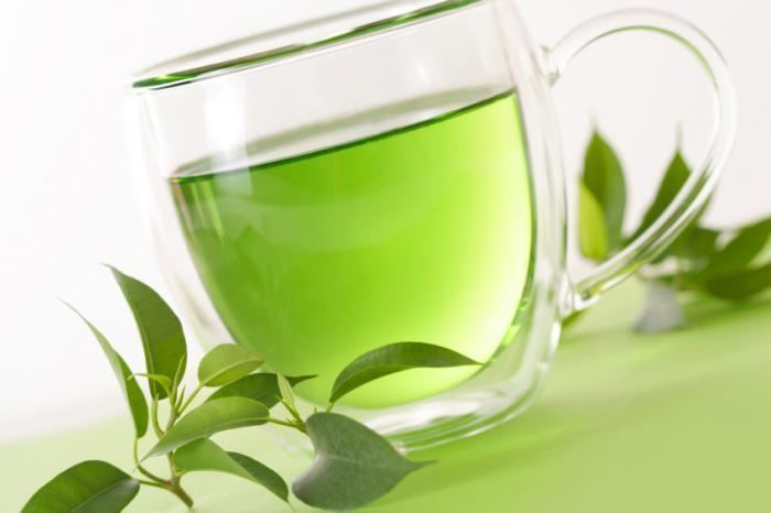 Green tea Green Tea Health Benefits Facts and Research Medical News Today