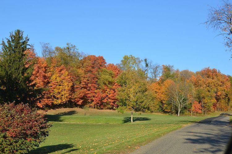Green Township, Ashland County, Ohio