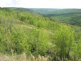 Greene Valley Provincial Park httpsuploadwikimediaorgwikipediacommonsthu