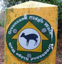 Greensand Ridge Walk httpsuploadwikimediaorgwikipediacommonsthu
