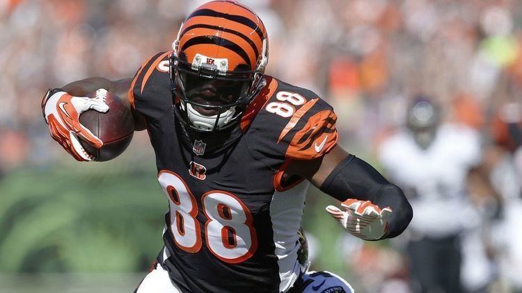 Greg Little (American football) Bengals release two players including WR Greg Little