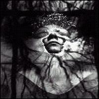 Grey Dawn (album) httpsuploadwikimediaorgwikipediaenaa9Gre
