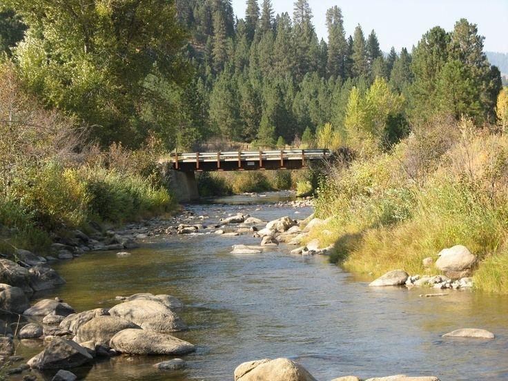 Grimes Creek httpssmediacacheak0pinimgcom736xa1a2d9