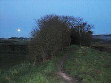 Grim's Ditch httpsuploadwikimediaorgwikipediacommonsthu