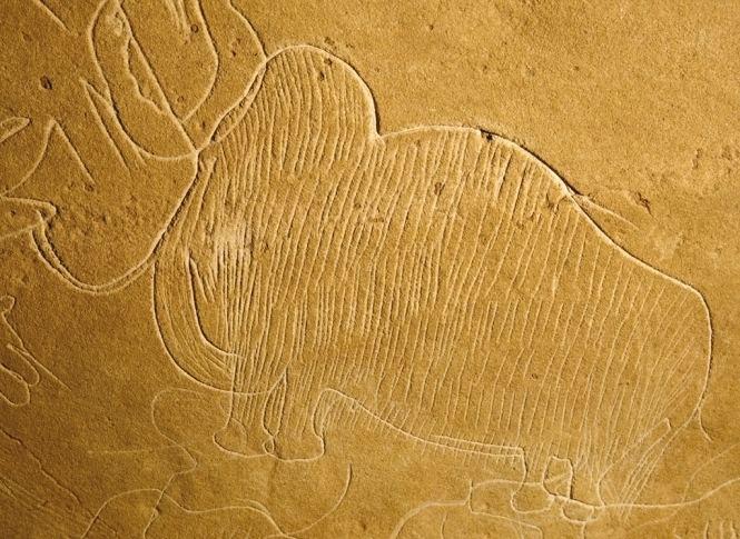 Grotte de Cussac PACEA De la Prhistoire l39Actuel Culture Environnement et