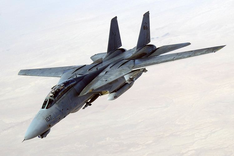 Grumman F-14 Tomcat 1000 images about F14 Tomcat on Pinterest Military Jets and F14
