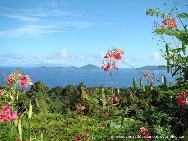 Guadeloupe Beautiful Landscapes of Guadeloupe